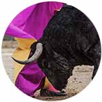bullfight fair La Rioja