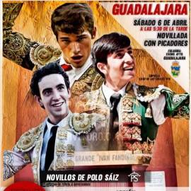 06/04 Guadalajara (17:30) Novillos