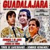 07/04 Guadalajara (17:00) Toros