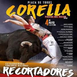 bullfight navarra