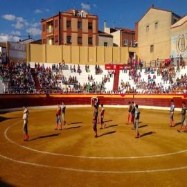 Roa de Duero (Burgos), Bullring
