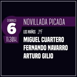06/10 Zaragoza (11:30) Novillos-matinal