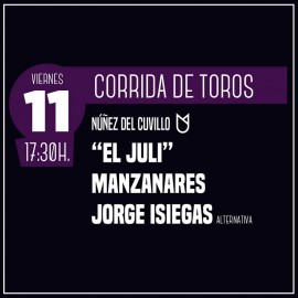 11/10 Zaragoza (18:00) Toros