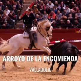 Bullfight ticket Arroyo de la Encomienda-Bullfighting festival