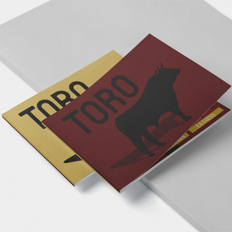 Toro book. Mini bullfighting encyclopedia