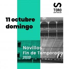 11/10 Madrid (17:00) Novillos