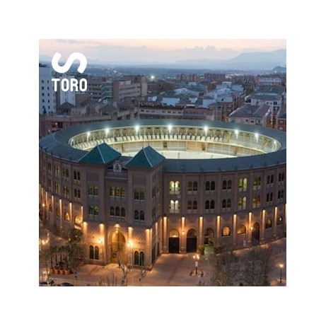 Bullfight tickets for Festival in Granada
