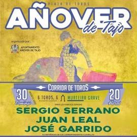 30/08 Añover de Tajo (20:00) Toros