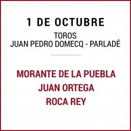 01/10 San Miguel (18:00) Toros