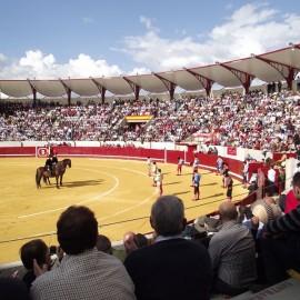 Bullring Don Benito. Badajoz