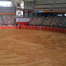 A Coruña. El Coliseum. Bullring