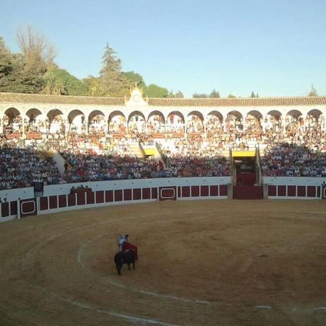 Bullring Antequera. Málaga.