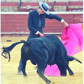 Fernando del Rocío