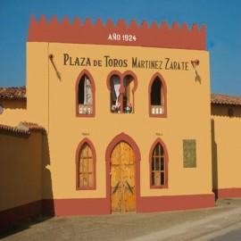 Valencia de Don Juan. Martínez Zárate. Bullring.