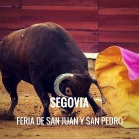 Entradas Toros Segovia - Feria de San Juan y San Pedro | Servitoro.com