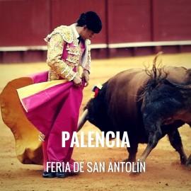 Entradas Toros Palencia - Feria de San Antolín | Servitoro.com