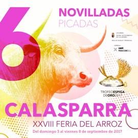 Abono Calasparra (6 festejos)