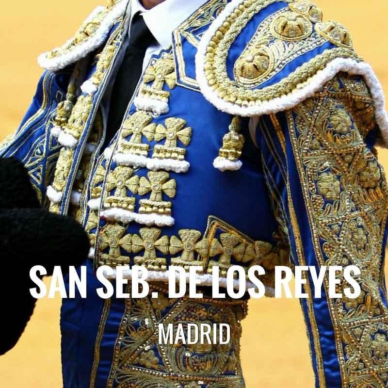 Fiestas san pedro regalado valladolid 2018