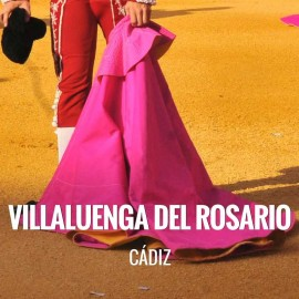 Bullfight tickets Villaluenga del Rosario - Bullfighting Festivities