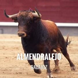 Entradas Toros Almendralejo - Feria y Fiestas de la Piedad