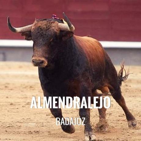 Bullfight tickets Almendralejo - Feria y Fiestas de la Piedad