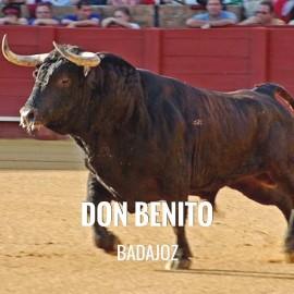 Entradas Toros Don Benito - Feria Taurina de Septiembre