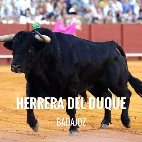 Entradas Toros Herrera del Duque - Festival Taurino