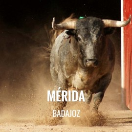 Bullfight tickets Mérida – Feria de Septiembre