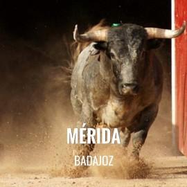 Entradas Toros Mérida - Feria de Septiembre