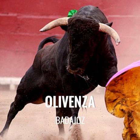 Entradas Toros Olivenza - Feria Taurina de Marzo