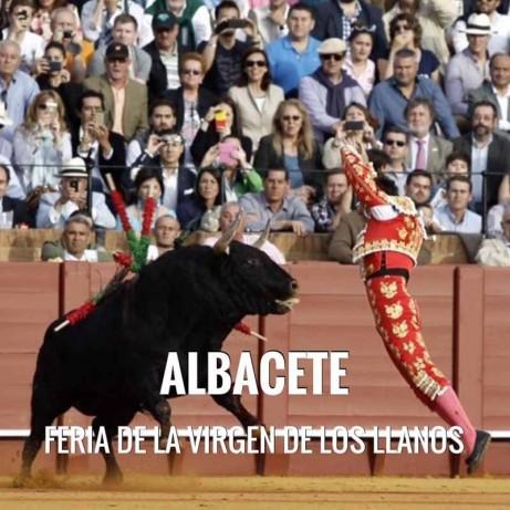Bullfight ticket Albacete - Feria Virgen de los Llanos