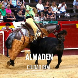 Bullfight tickets Almaden - Bullfighting Fair