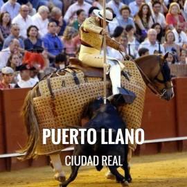 Entradas Toros Puertollano - Feria de Mayo