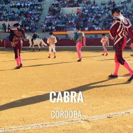 Bullfight tickets Cabra - Bullfighting Celebration