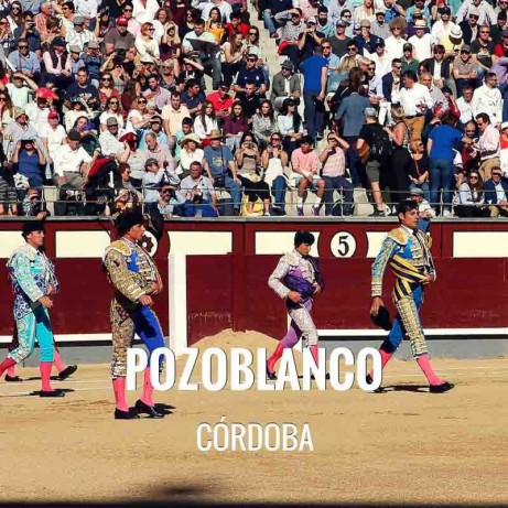 Bullfight tickets Pozoblanco – Feria de la Virgen de las Mercedes