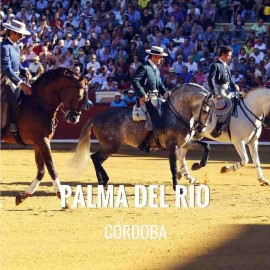 Bullfight tickets Palma Del Rio - Bullfighting Fair