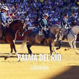 Entradas toros Palma Del Rio - Festival Taurino