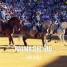 Bullfight tickets Palma Del Rio - Bullfighting Fair