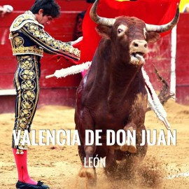 Bullfight Tickets Valencia de Don Juan - Bullfighting Festivities 2018