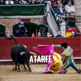 Bullfight tickets Atarfe - Feria de Santa Ana