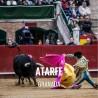 Entradas Toros Atarfe - Feria de Santa Ana