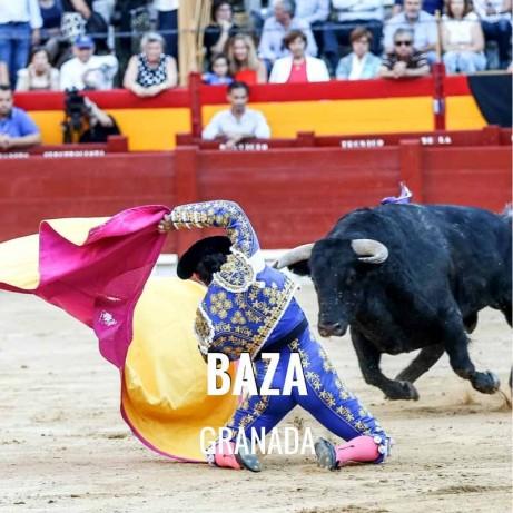 Bullfighting Fair Baza - Feria Virgen de la piedad