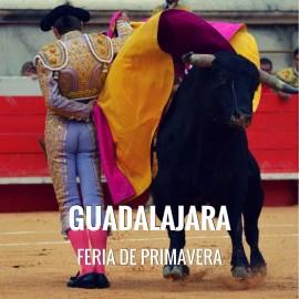 Entradas Toros Guadalajara - Feria de Primavera