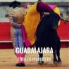 Bullfight tickets Guadalajara – Feria de Primavera