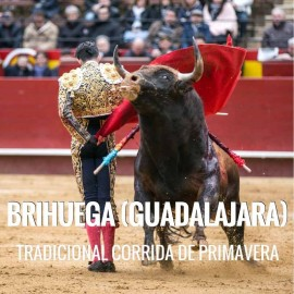Bullfight tickets Brihuega – Spring Bullfighting