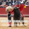 Bullfight tickets Brihuega – Spring Bullfighting