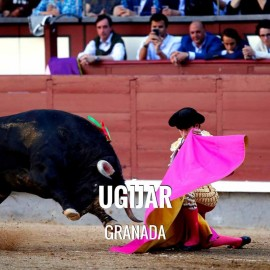 Bullfight Tickets Ugijar - Bullfighting Fair