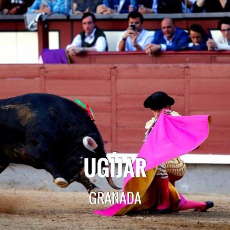 Bullfight Tickets Ugijar - Bullfighting Fair
