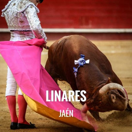 Entradas Toros Linares - Feria de San Agustín