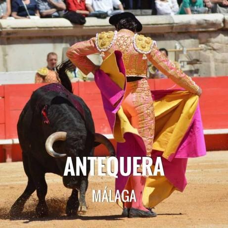 Bullfight tickets Antequera - Real Feria de Agosto 2018
